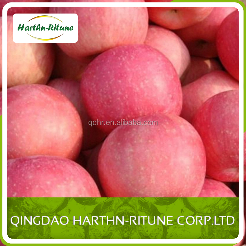 export fresh red delicious apple fruit fresh apple thailand