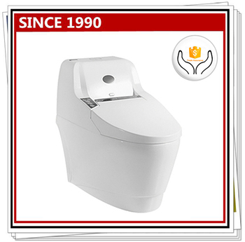 5742w Smart Toilet Aids For Disabled - Buy Toilet Aids For ...