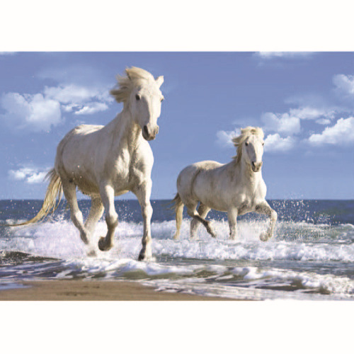 Factory Direct Simplicity Style Beautiful Moving 3d Picture Horse