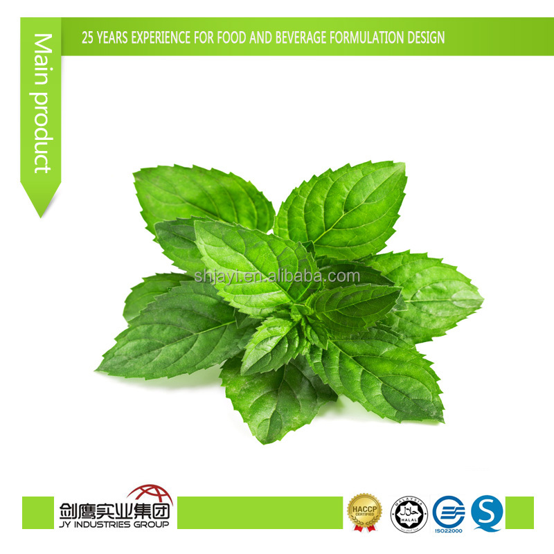 mint flavor FOODFLAVOR/ESSENCE/flavor enhance