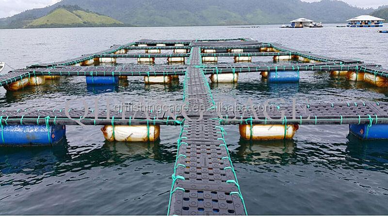 Tilapia jaula granja bagre jaula granja trucha jaula for Jaulas flotantes para piscicultura