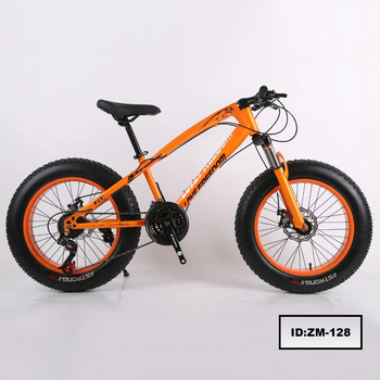 20 Inch 21 Speed Double Disc Brake Student Kids Fat Tire Beach