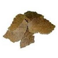 USDA Organic Karanja Cake 100% PURE Fertilizer