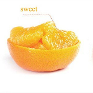 the high quality fresh citrus fruit/the lowest price of orange