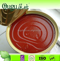 tomato ketchup preservatives tomato paste canned tomato paste in drums
