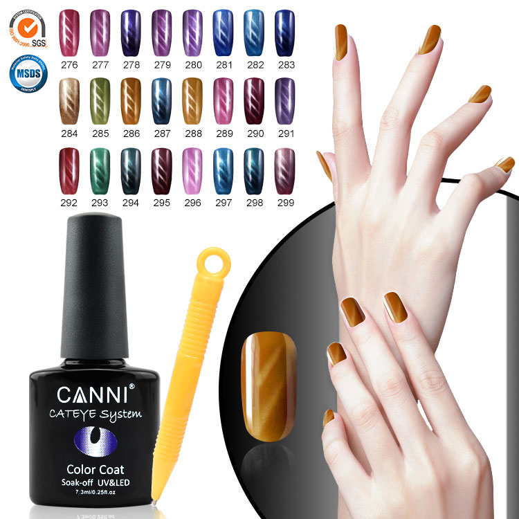 51023W CANNI wholesale 24 color magnetic nail polish gel varnish magnet gel effect nail polish