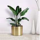 customize European style metal plated planter pot or anodized aluminium plant pot
