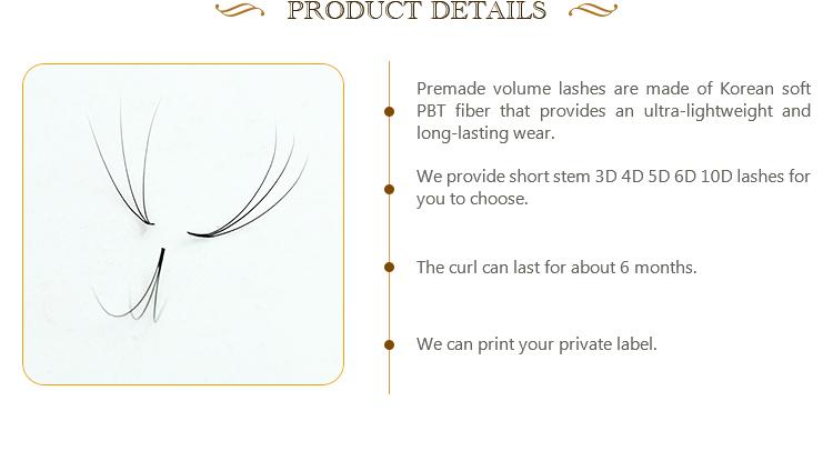 Easy Fast ปลูก Rapid ขนตา 3d 5d mink lashes premade แฟน