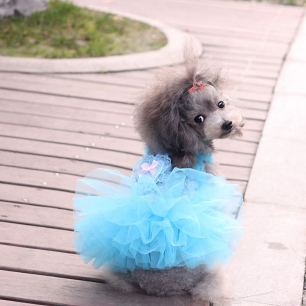 Old Fashioned Dogs Wedding Dress Component - All Wedding Dresses ...
