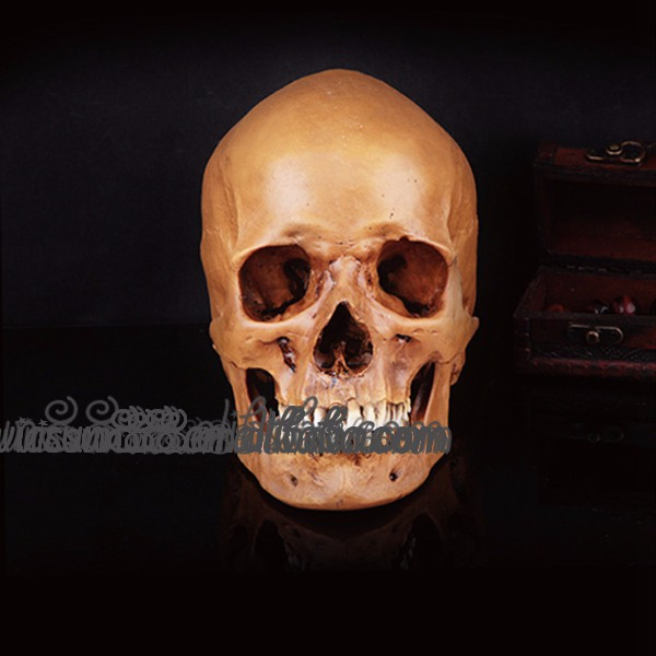 SZ-095 Yiwu Caddy Horror Scary flaw Human Skull Full Head resin Mask Treasure Hunter replica prop The movie theme masks