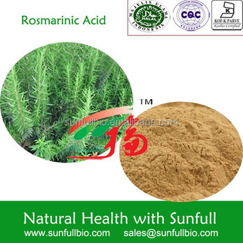 High Quality Rosemary Extarct / Oil Soluble Antioxidant /water ...