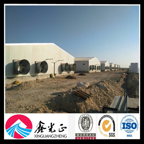 china cheap automatic equipment broiler poultry farm house design