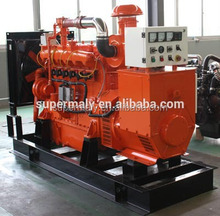 40kW biogas generator by Yangdong engine