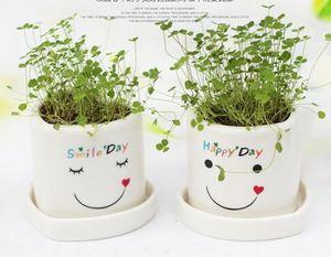 New Design Air Bonsai Magnetic Levitation Device Levitating Plant Floating  Flower Pot creative planting gift