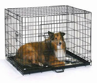 trade assurance popular plastic powder coated foldable dog crate pet cage