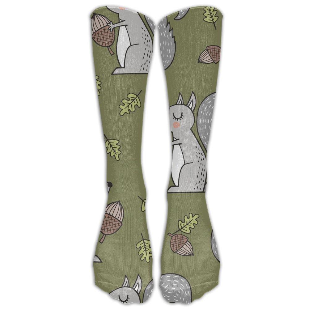 66fa1ebbb Get Quotations · LOIGEIDQ Socks Squirrel Crew Socks Crew socks Crazy socks  for youth boys girls 3D Print Thin