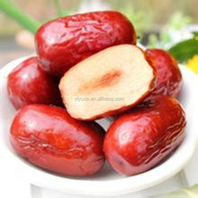 Bottom price hot sell dried food-red date Fresh Dates