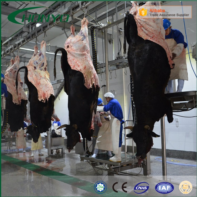 Customized Cattle And Sheep Slaughter House Equipment With