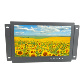 16/9 ratio 10 inch model lcd monitor with video playing loop function