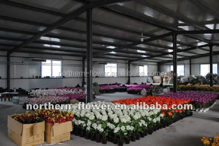 decorative artificial PU flowers wholesale,natural touch artificial calla lilies