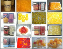 Vitamin D In Cans Food & canned food