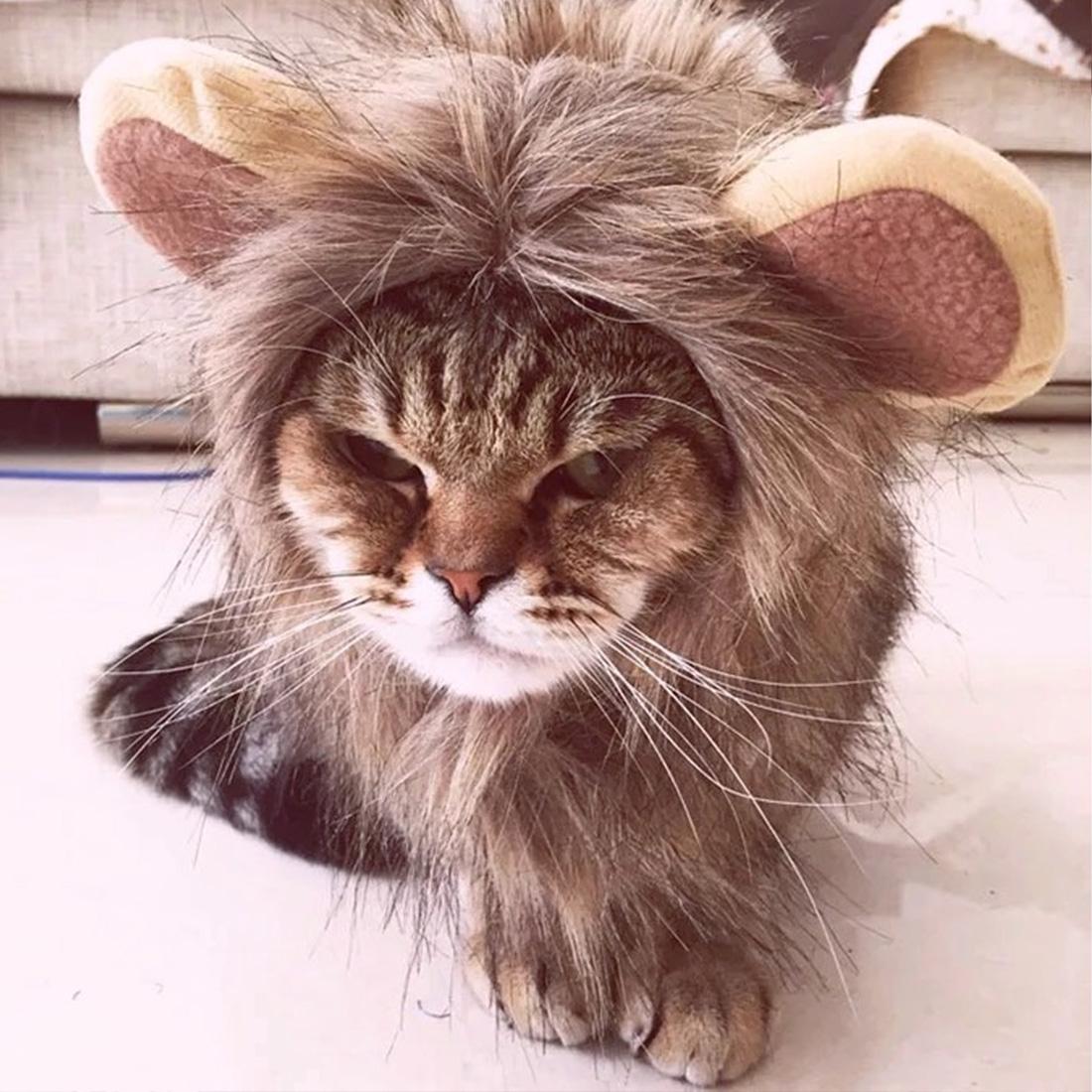 S M L Funny Small Pet Dog Cat Cosplay Lion Wig Head Cap Hat Costume ... 343fb1bda