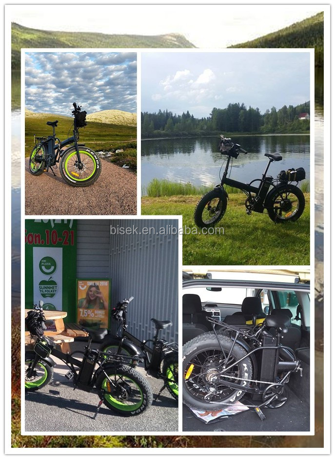 20inch folding electric bike/ foldable electric bicycle/ fat tire mountain e bike