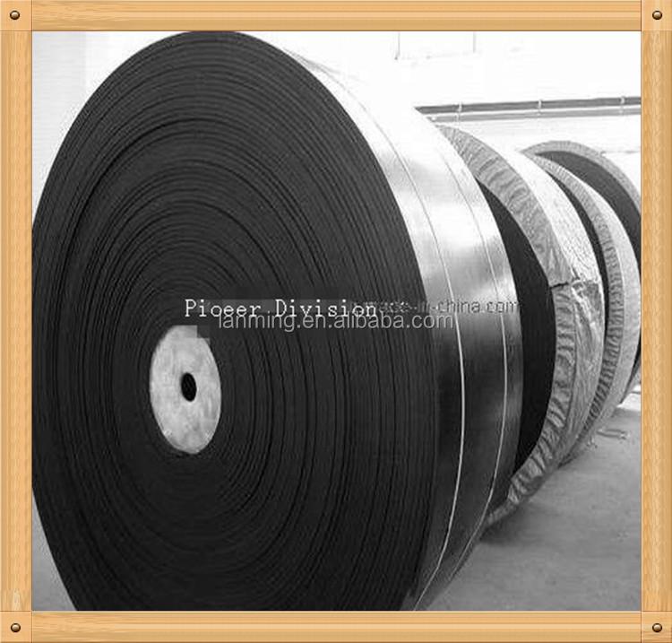 Meter Nylon Conveyor 39