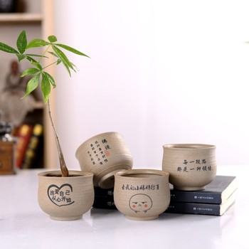 Living room indoor small ceramic flower plant pot for wholesale