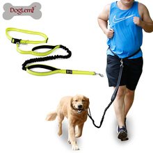 Hands Free Dog Leash Nylon Reflecting Running Pet Leash for Bungee Walking Hiking