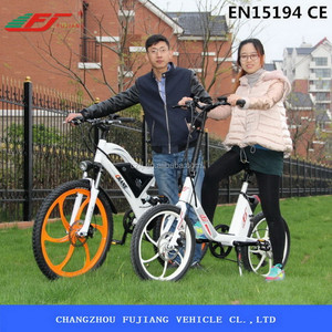 250W electric bicycle two wheels vietnam with EN15194
