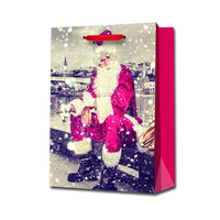 Cheap promotional recycled custom made christmas paper gift bag