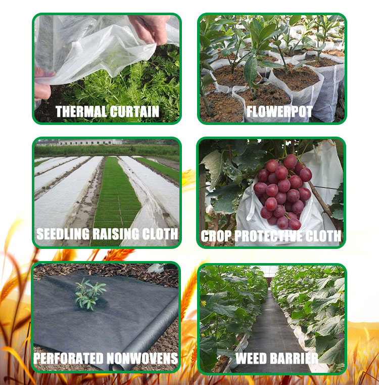 nonwoven fabric agriculture spunbond nonwoven fabric sdhuaye