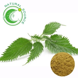 High Quality Chinese Herbal Organic Silicon Extract Nettle Leaf Tea Extract 10:1
