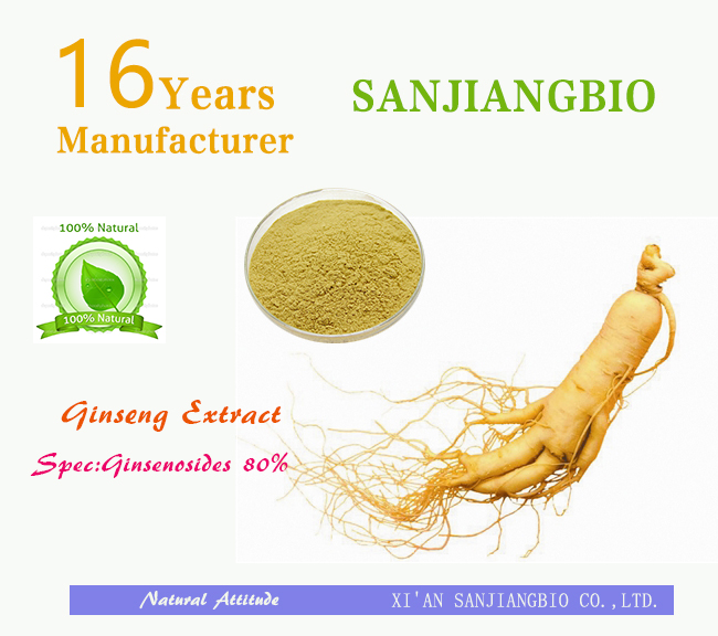 ISO Factory direct sale ginseng panax/panax ginseng/panax ginseng extract