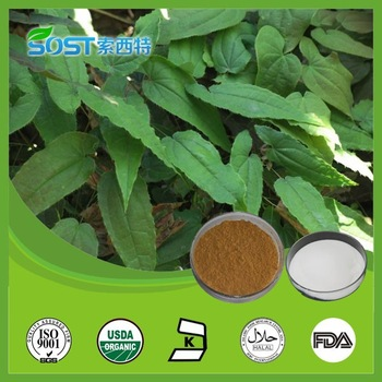 Horney goat weed effects high blood pressure for females