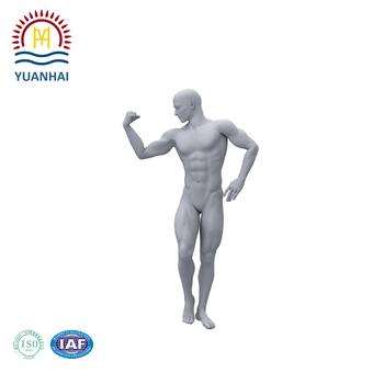 Hochwertige Individuelle Menschlichen Körper Modell Einschließlich ...