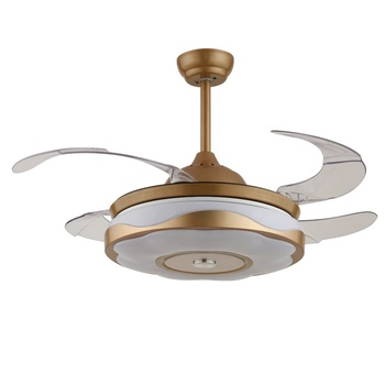 42 Inch Plastic Blade Hidden Ceiling Fan Light With Remote Decorate Oceiling Fans Style Retractable