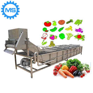 Commercial Bubble Fruit Vegetable Washing Machine /Bubble Tomato Washer/Bubble Mango Washer
