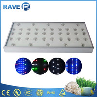 high output LEDs 20000k programable led aquarium lights for coral reef fish tank shop 40cm