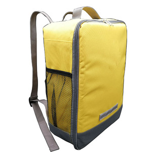 Preium Quality 420D Polyester Mesh Side Pockets Backpack Cooler for Students