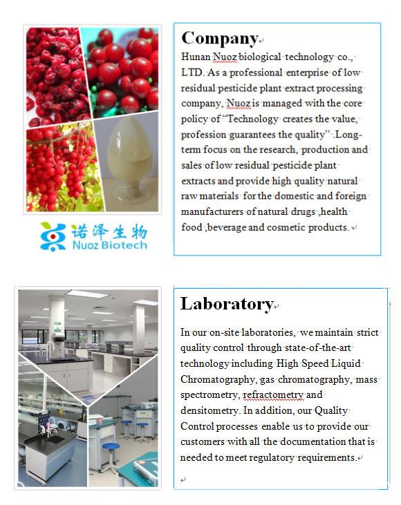 Wholesale protect heart function Chinese Magnoliavine Fruit ...