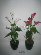 2016 New Disign Arificial Flowres Potted Five Heads Calla Lily For Home/Table DecorationMH-072