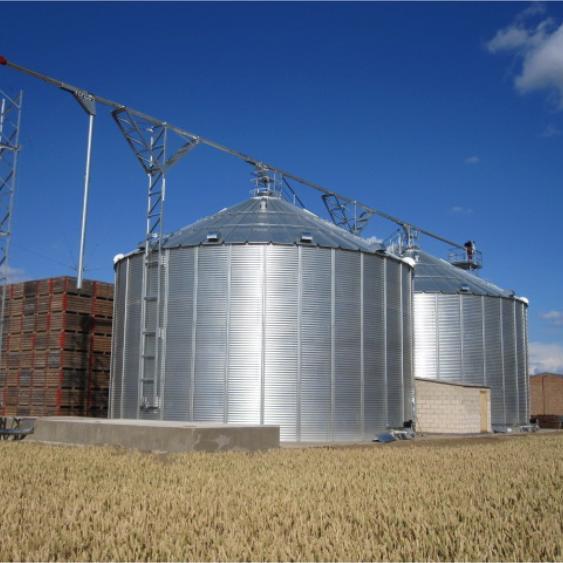 Vertical Sealed Coffee Bean Paddy Rice Storage Silo/Maize Milk Grain Corn Steel Silo for Sale