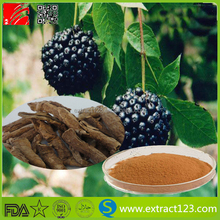 Nature Siberian Ginseng P.E, Siberian Herbal Extract, Ginseng Power