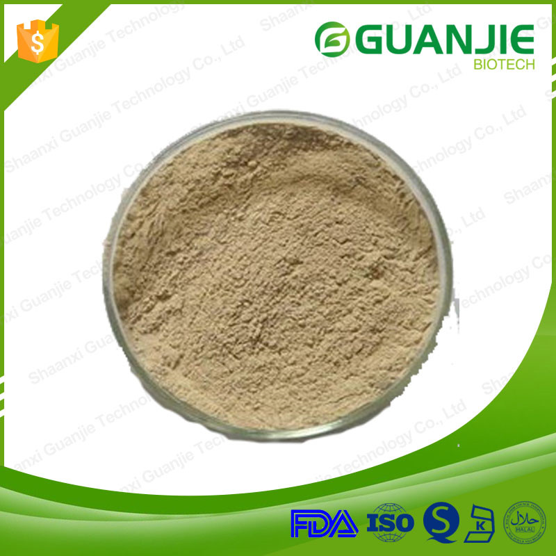 Factory supply horny goat weed powder icariin 20% 40% 60% 80% 98% bulk