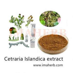 Factory supply product of Lichen Extract Iceland Moss Extract with 10:1