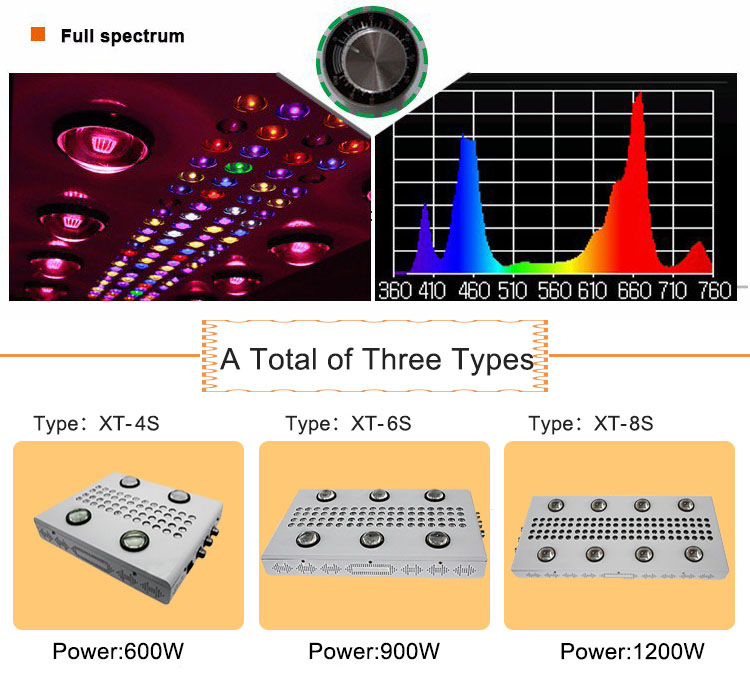 High Lumen Dimmable Noah 4s 6s 8s COB Led Grow Light For Indoor Plants With Wifi Control