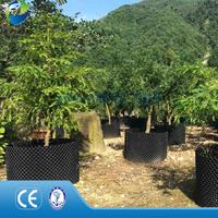 Eco-friendly plastic nursery air root container Agricultural.