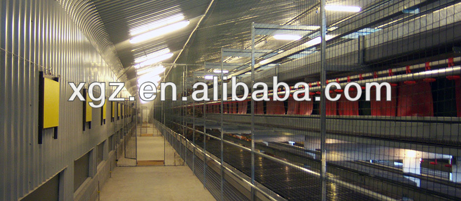 Modern Design Chicken Egg Poultry Farm